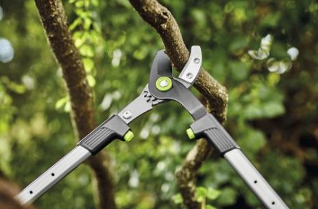 foarfeca telescopica pentru pomi