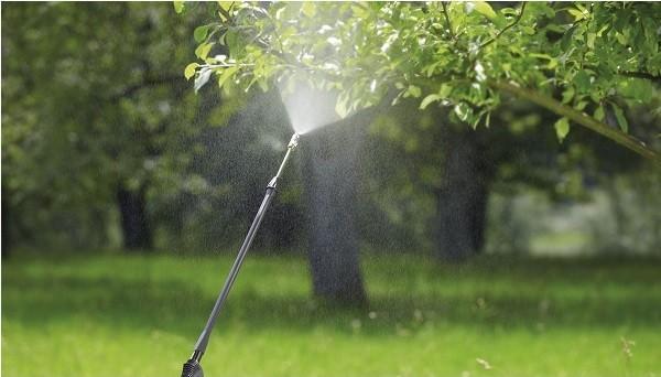 cea mai buna pompa de stropit electrica
